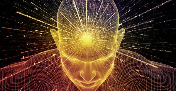 wisdom heart brain connection